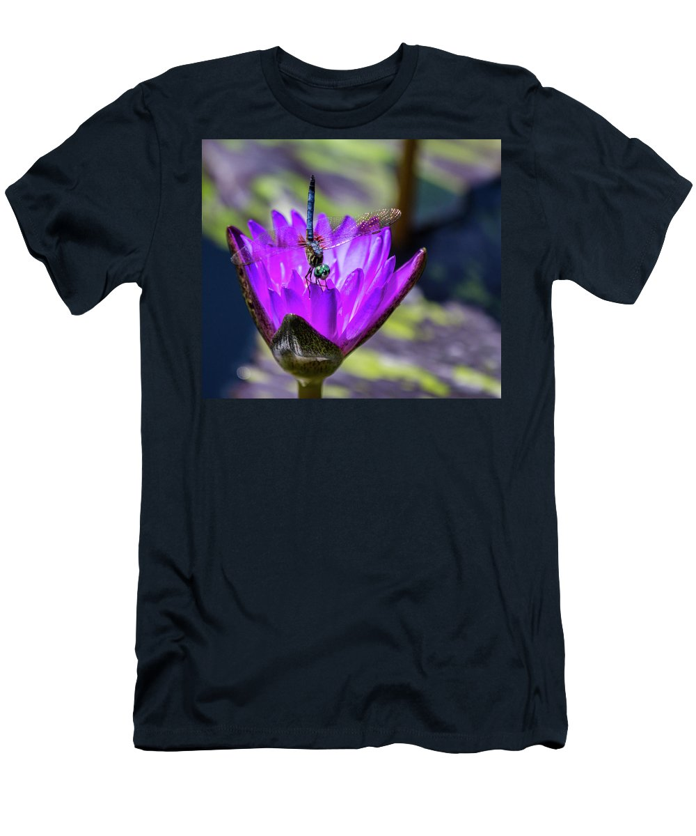 Dragonfly Men's T-Shirt (Athletic Fit) featuring the photograph Teal Dragonfly by Kathy Whitehurst