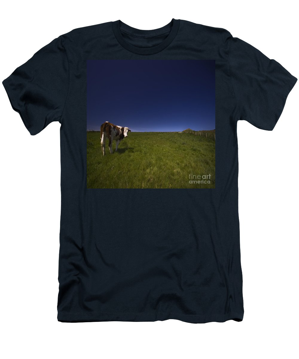 Cow Men's T-Shirt (Athletic Fit) featuring the photograph The Moody Cow by Angel Tarantella