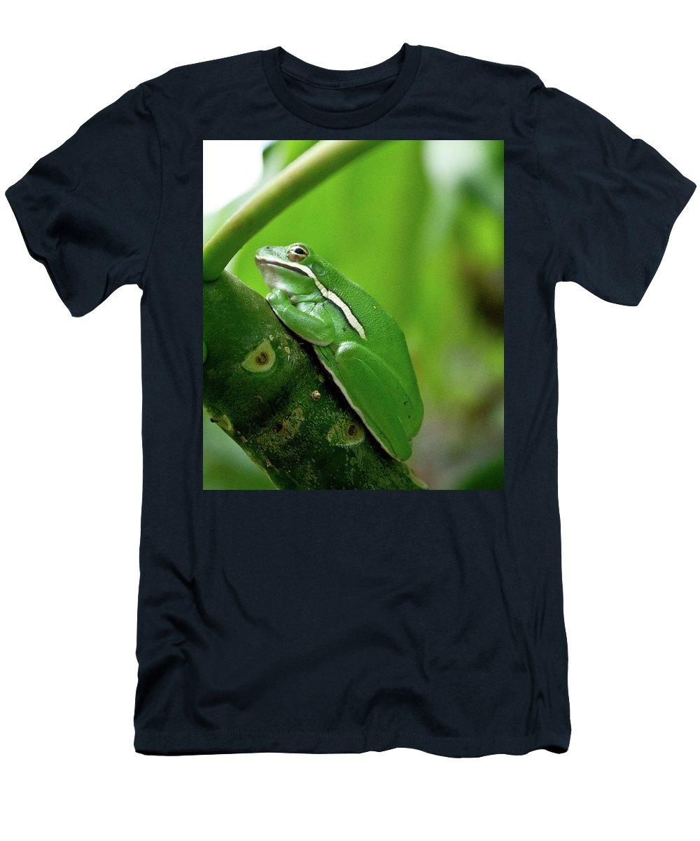 Men's T-Shirt (Athletic Fit) featuring the photograph Tree Frog by Keith Peacock
