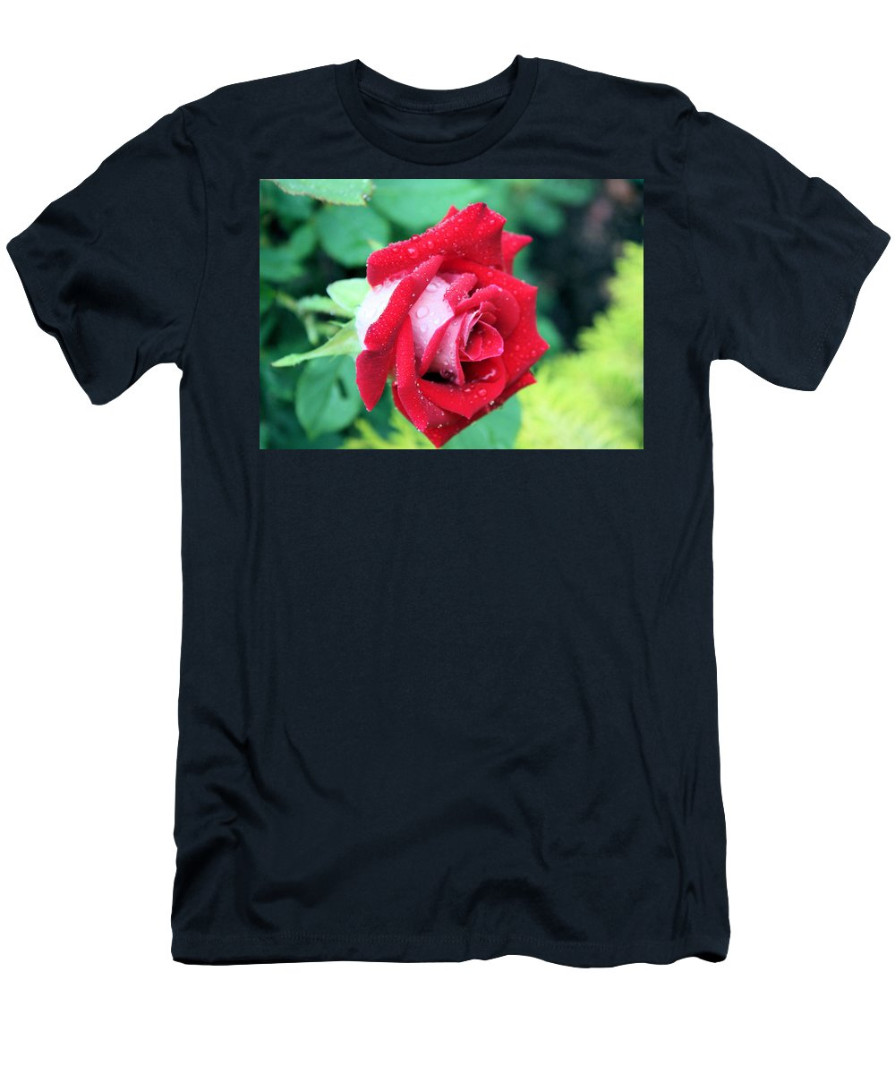 Rose Men's T-Shirt (Athletic Fit) featuring the photograph Very Dewy Rose by Kristin Elmquist