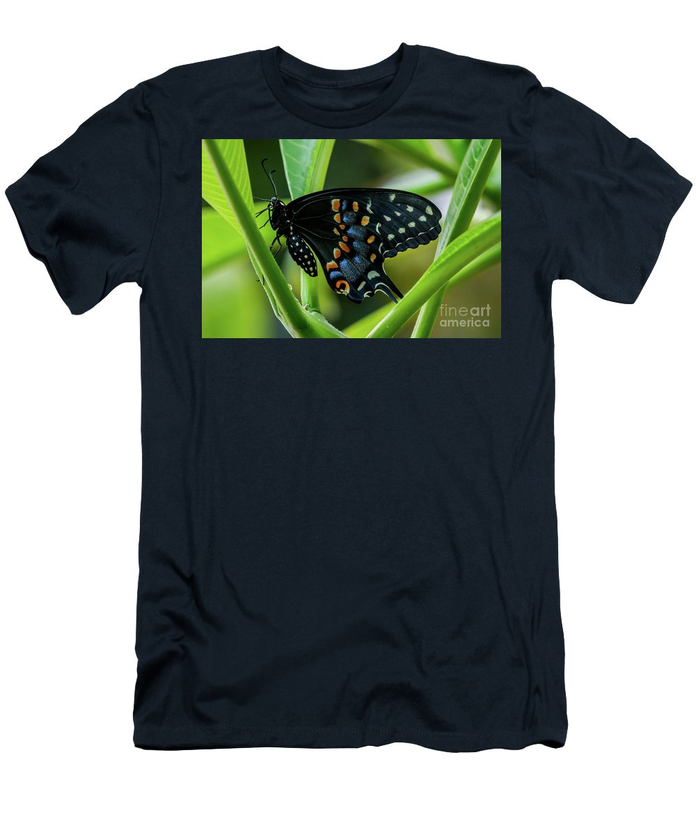 Butterfly Men's T-Shirt (Athletic Fit) featuring the photograph Eastern Black Swallowtail - Closed Wings by Jo Ann Gregg