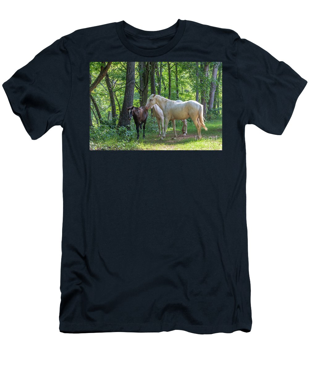 Horse Men's T-Shirt (Athletic Fit) featuring the photograph Family Of Horses by Terri Morris