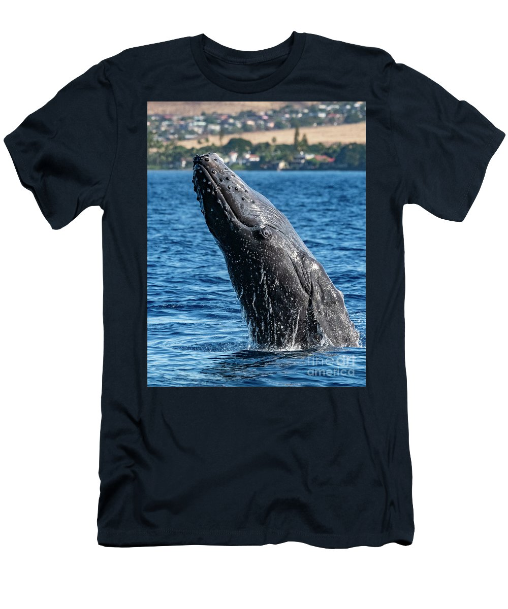00595515 T-Shirt featuring the photograph Juvenlie Humpback Breaching by Flip Nicklin