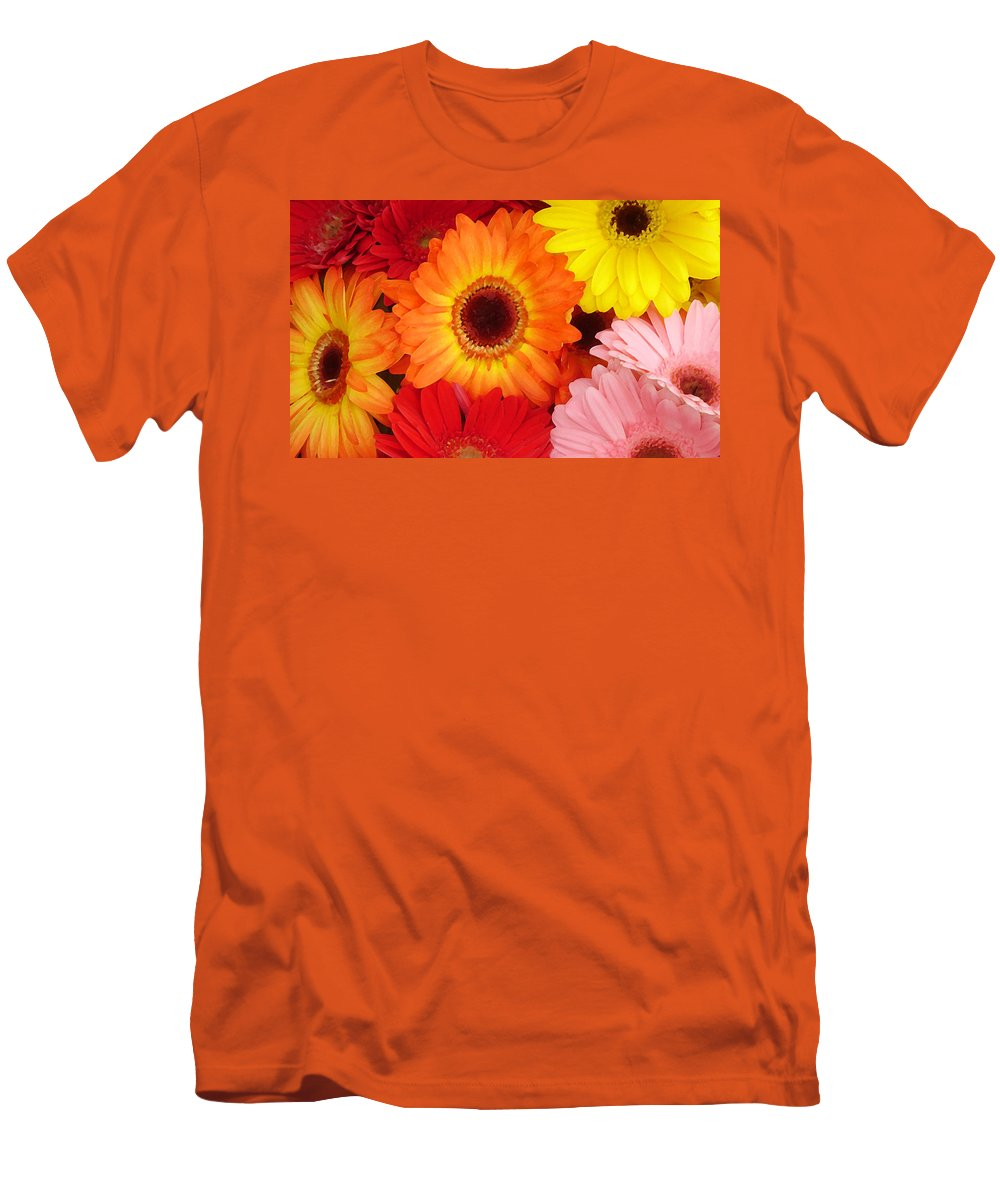 Gerber Daisy Men's T-Shirt (Athletic Fit) featuring the painting Colorful Gerber Daisies by Amy Vangsgard