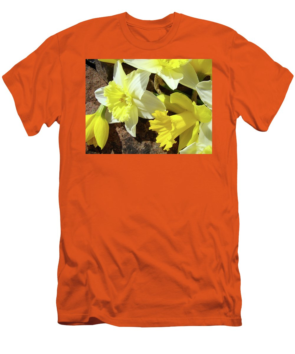 �daffodils Artwork� Men's T-Shirt (Athletic Fit) featuring the photograph Daffodils Flower Bouquet Rustic Rock Art Daffodil Flowers Artwork Spring Floral Art by Baslee Troutman