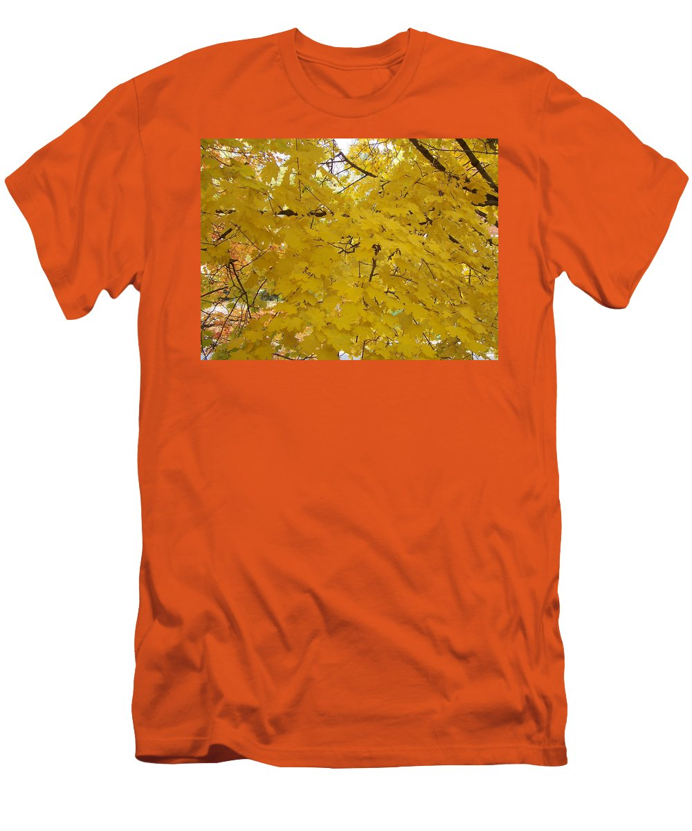 Fall Autum Trees Maple Yellow Men's T-Shirt (Athletic Fit) featuring the photograph Golden Canopy by Karin Dawn Kelshall- Best