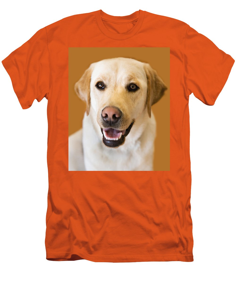 Lab Men's T-Shirt (Athletic Fit) featuring the photograph Golden Lab by Marilyn Hunt