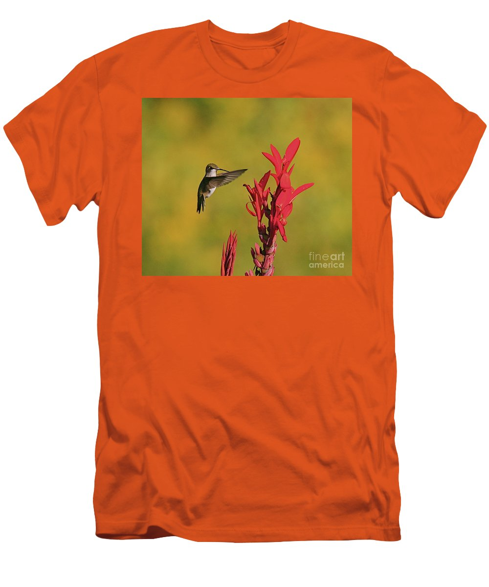 Humming Bird Men's T-Shirt (Athletic Fit) featuring the photograph Hummer by Robert Pearson