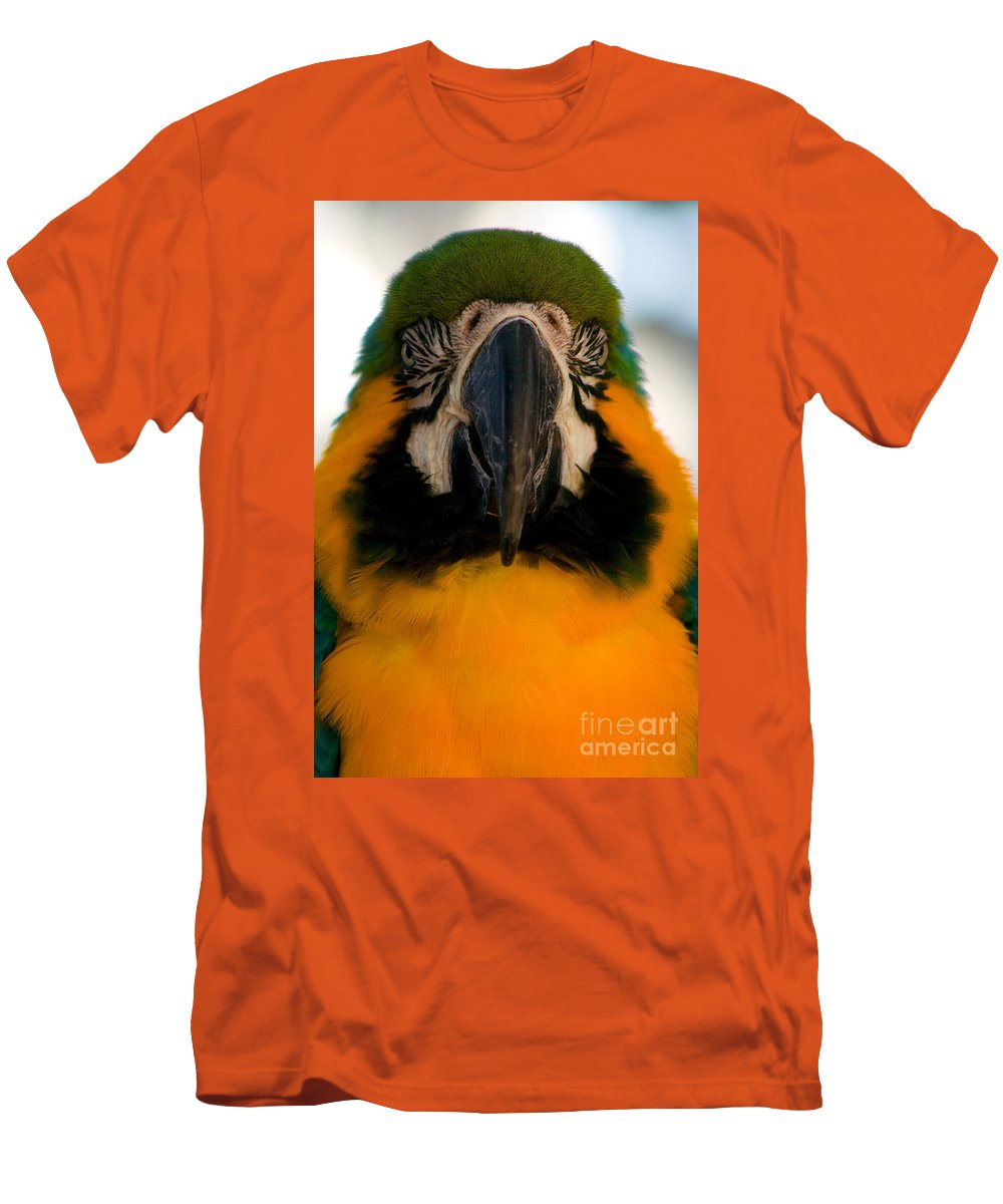 Macaw Men's T-Shirt (Athletic Fit) featuring the photograph Macaw IIi by Thomas Marchessault
