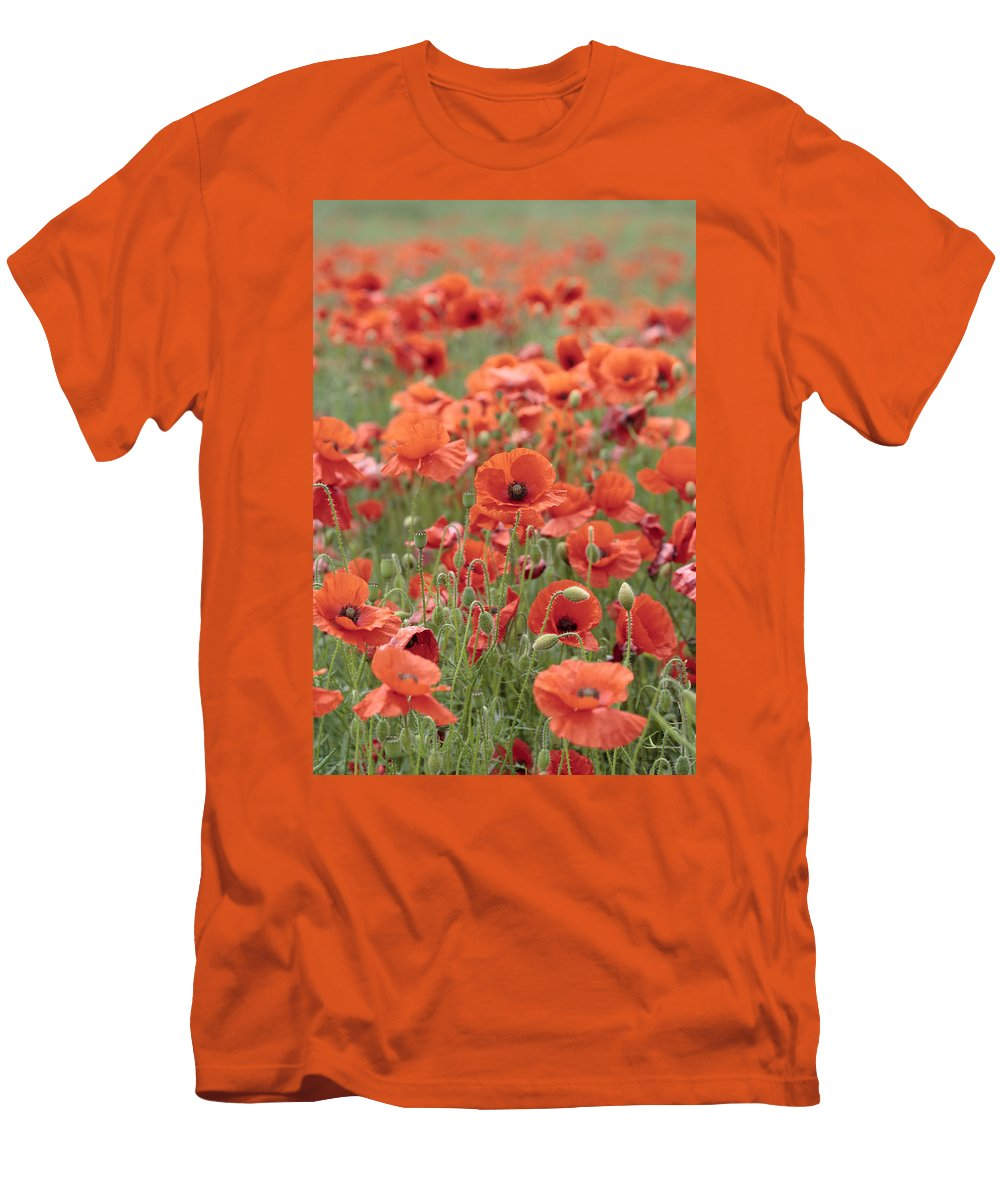 Poppy Men's T-Shirt (Athletic Fit) featuring the photograph Poppies by Phil Crean