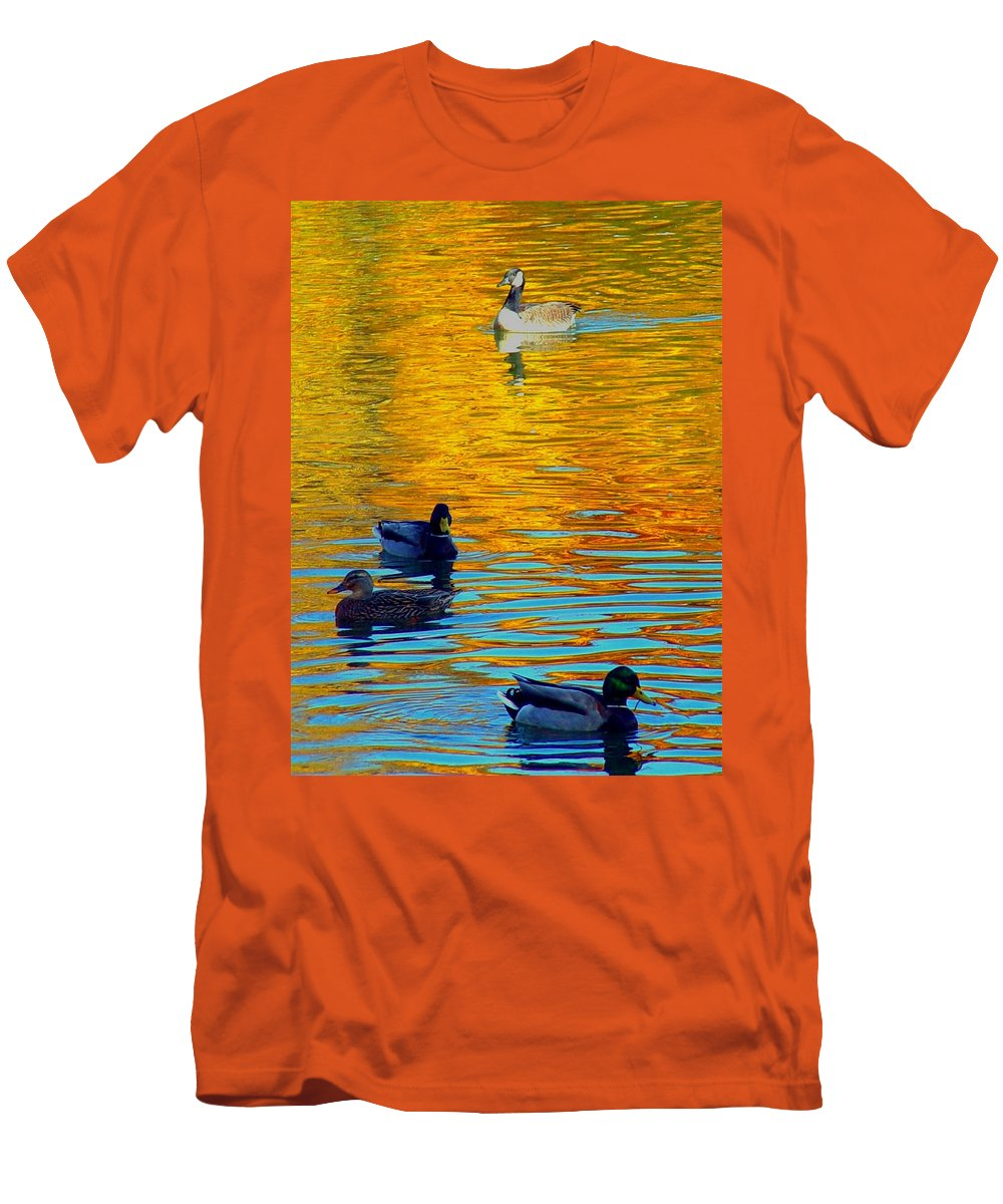 Ducks Malard Lake Gold Canada Geese Blue Men's T-Shirt (Athletic Fit) featuring the photograph Possibilities by Jack Diamond