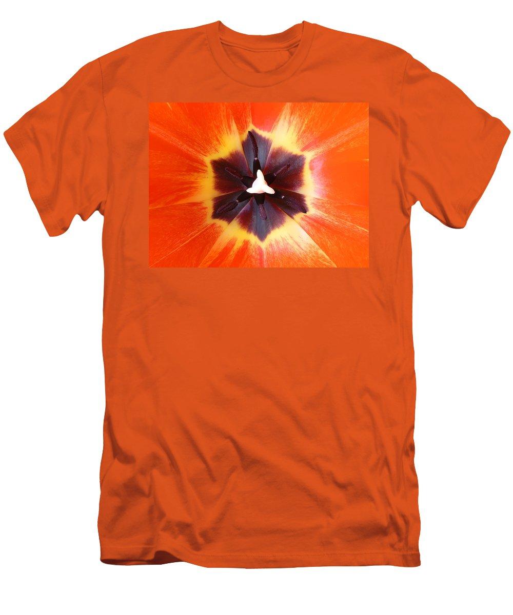 Tulip Men's T-Shirt (Athletic Fit) featuring the photograph Tulip by Daniel Csoka