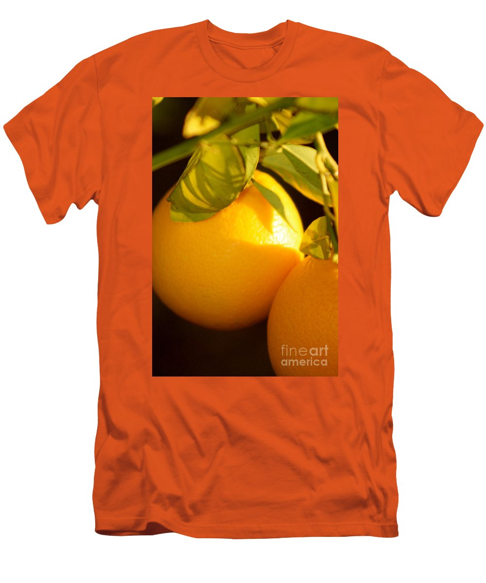 Fruit Men's T-Shirt (Athletic Fit) featuring the photograph Winter Fruit by Nadine Rippelmeyer