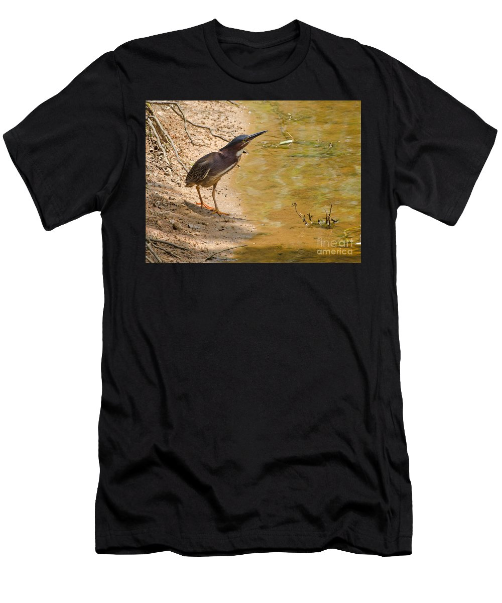 Bird Men's T-Shirt (Athletic Fit) featuring the photograph Shady Spot by Donna Brown