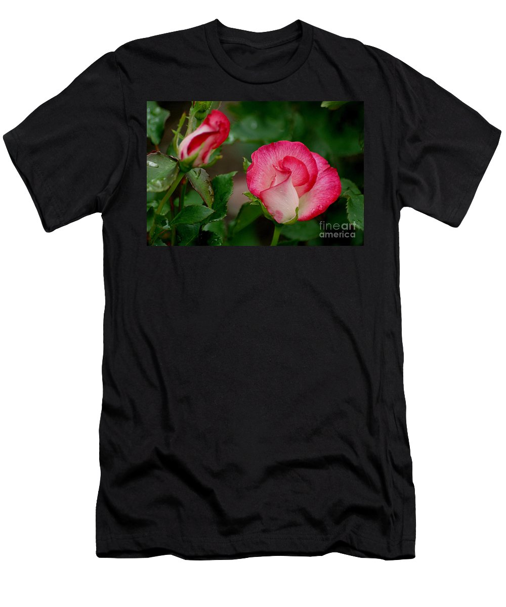 Roses Men's T-Shirt (Athletic Fit) featuring the photograph After The Rain by Living Color Photography Lorraine Lynch