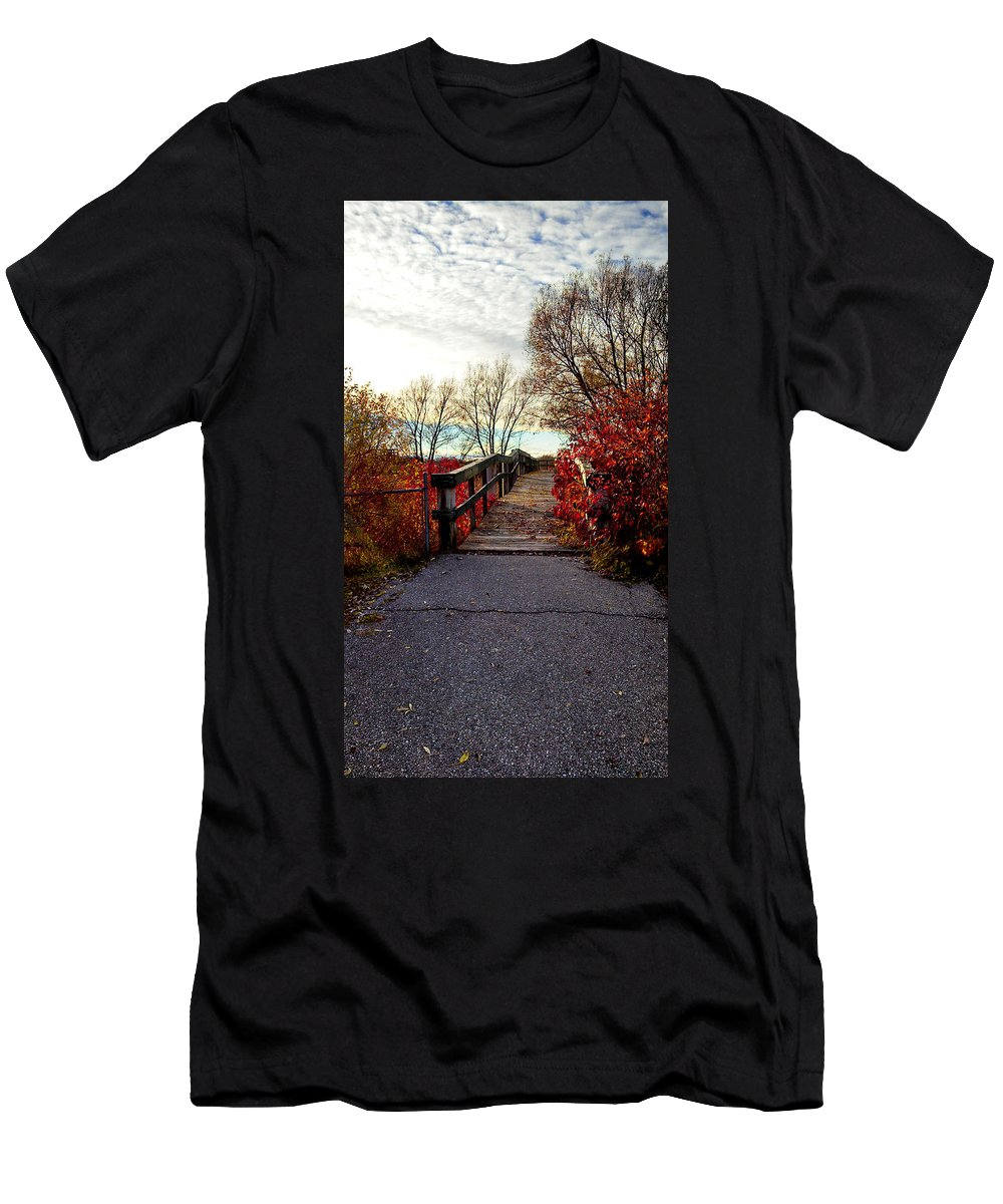 Cheboygan Men's T-Shirt (Athletic Fit) featuring the photograph Autumn Journey by Kim Ruley