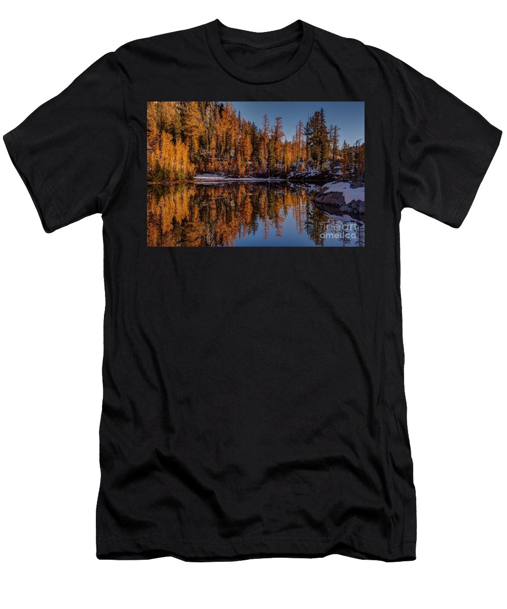 Larches Men's T-Shirt (Athletic Fit) featuring the photograph Autumn Reflected by Mike Reid