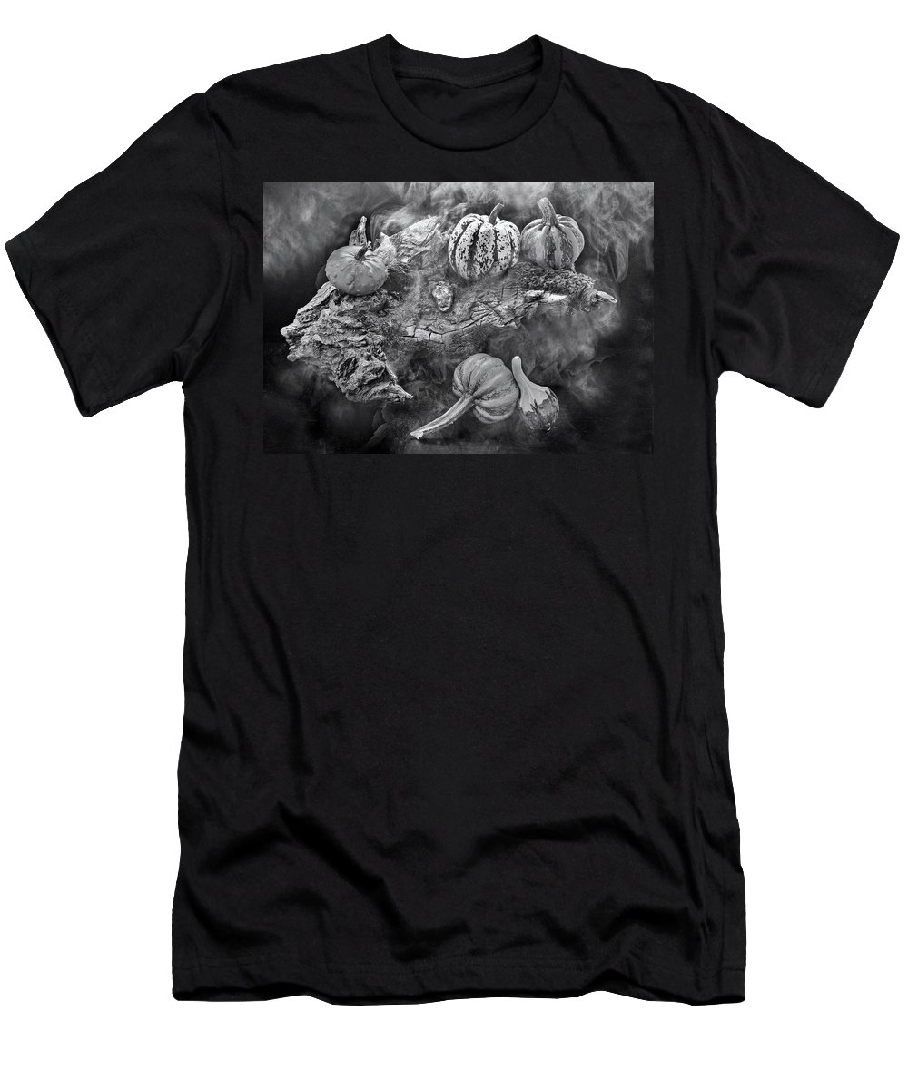 Autumn Men's T-Shirt (Athletic Fit) featuring the photograph Autumnal by Manfred Lutzius