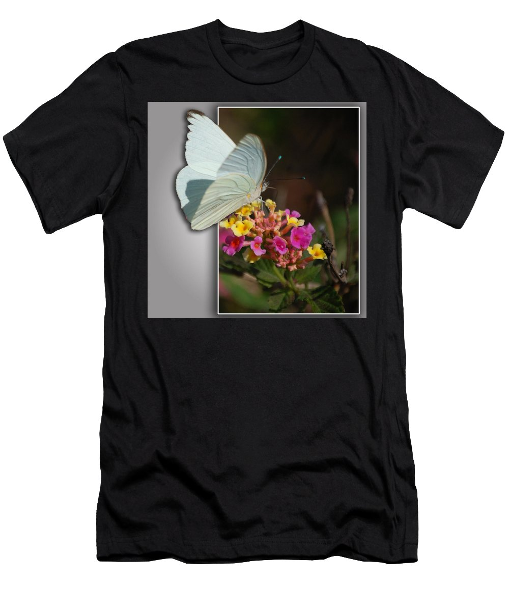 Butterfly Men's T-Shirt (Athletic Fit) featuring the photograph Blank Greeting Card 3 by Leticia Latocki