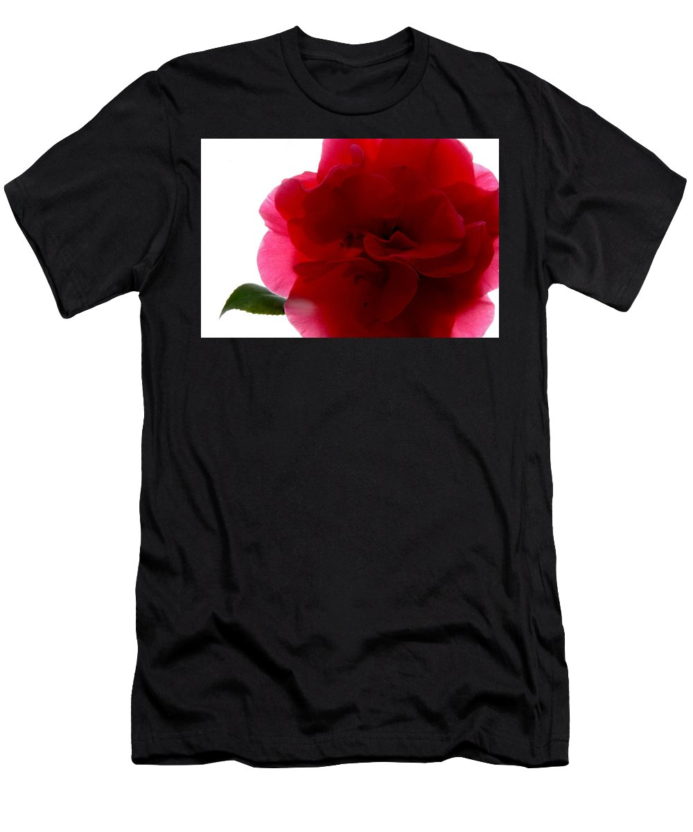 Camelia Men's T-Shirt (Athletic Fit) featuring the photograph Camelia by Charlotte Schafer