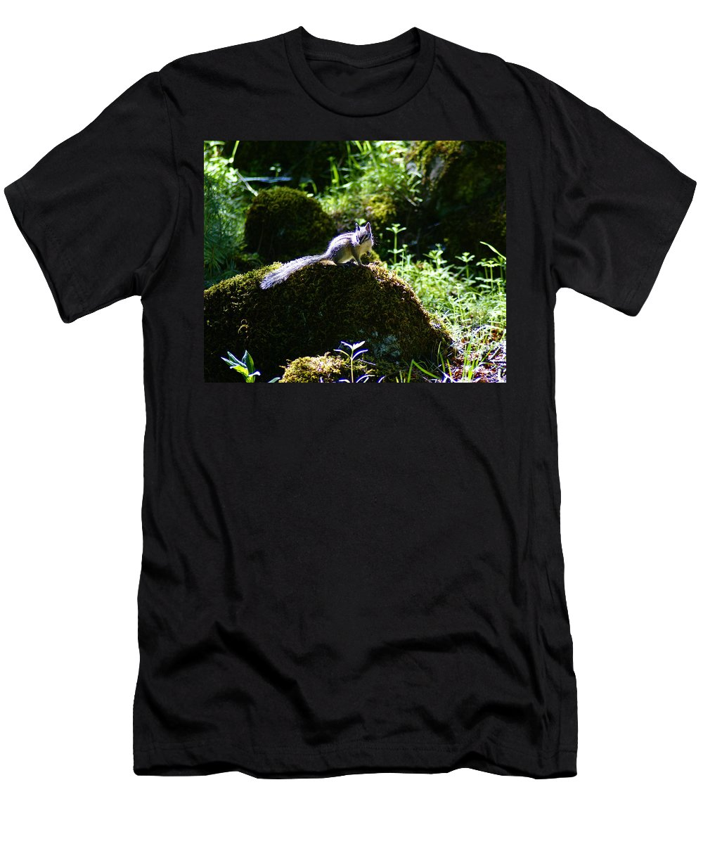 Chipmunk Men's T-Shirt (Athletic Fit) featuring the photograph Chipmunk In The Sun by Ben Upham III