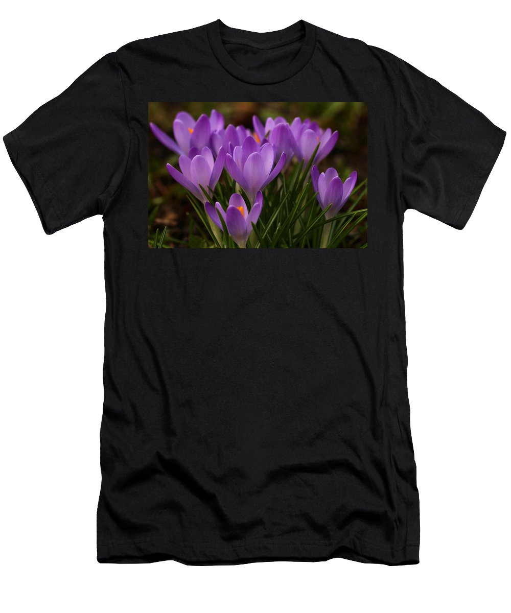 Crocus Men's T-Shirt (Athletic Fit) featuring the photograph Crocus by Heike Hultsch