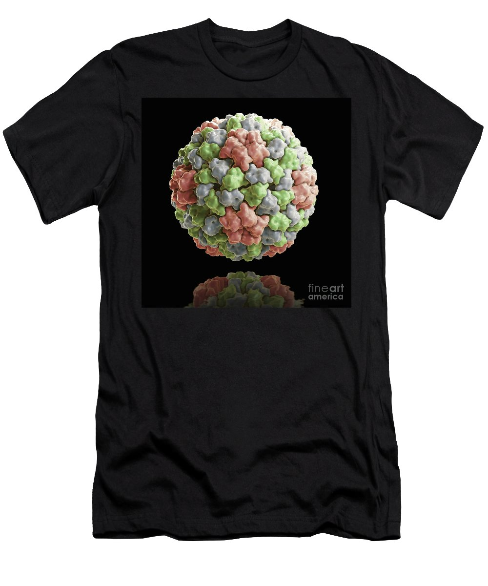 Bromoviridae Men's T-Shirt (Athletic Fit) featuring the photograph Cucumber Mosaic Virus by Science Picture Co