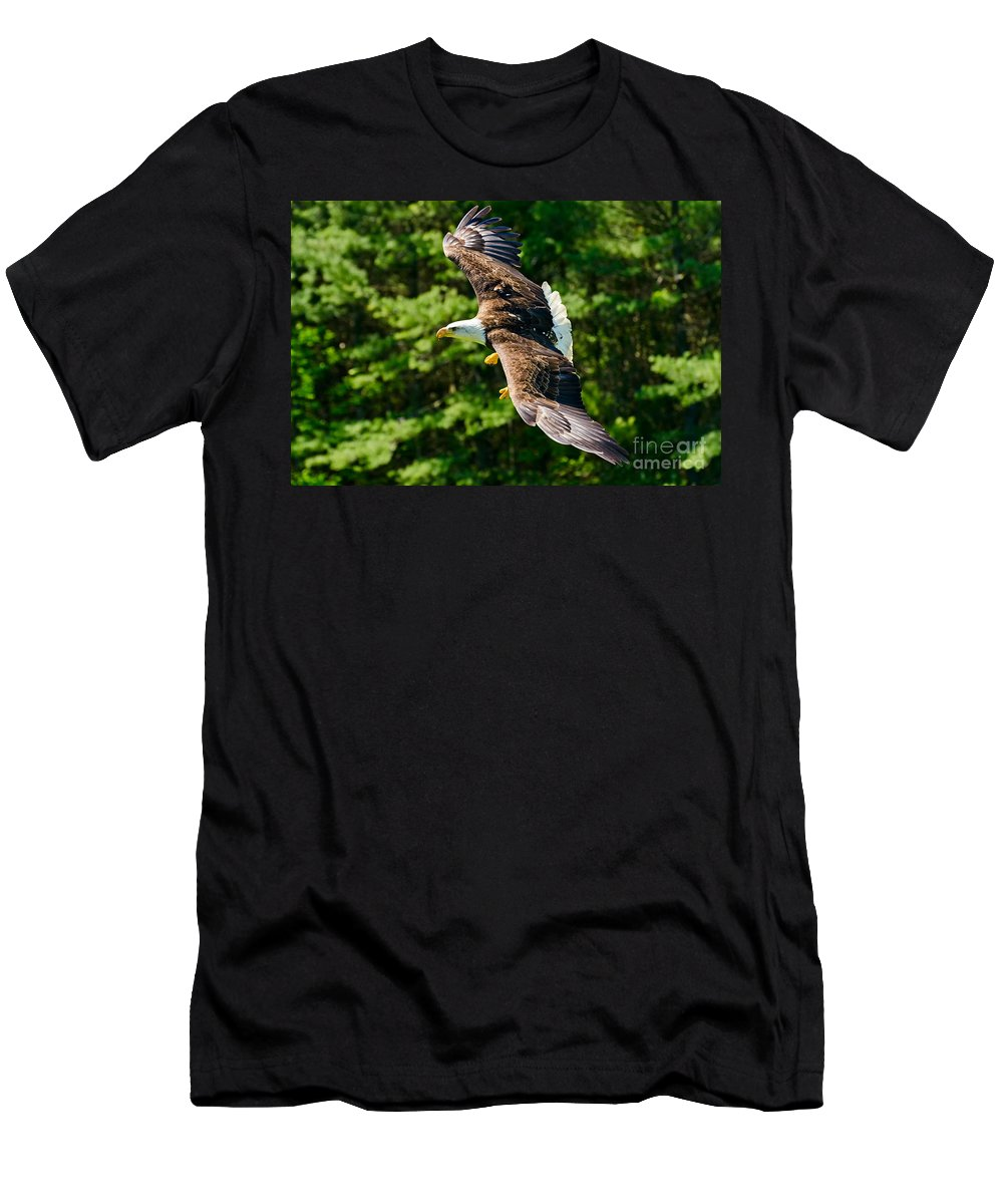Bald Men's T-Shirt (Athletic Fit) featuring the photograph Flying Eagle by Les Palenik