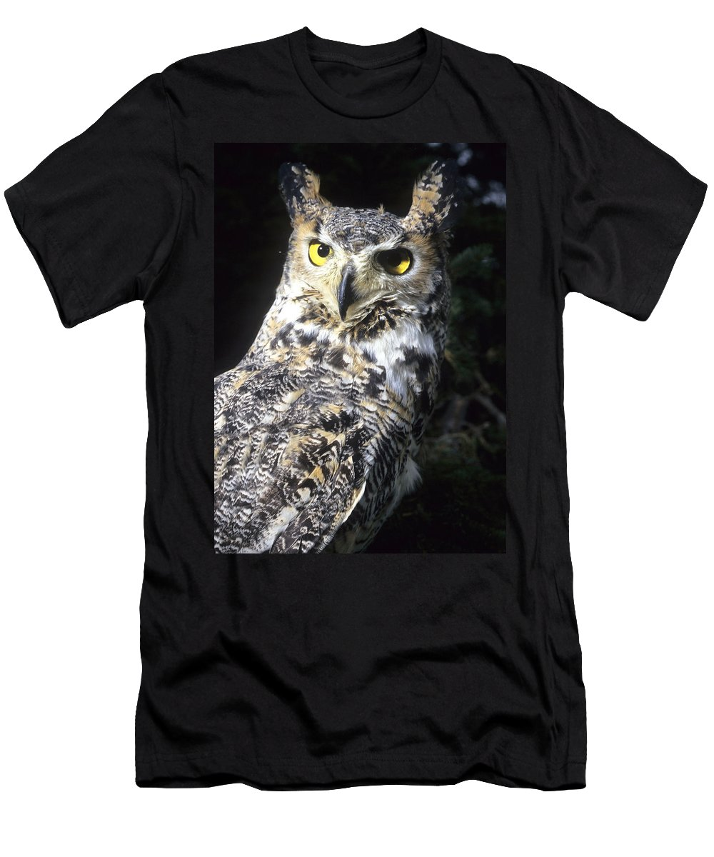 Owl Men's T-Shirt (Athletic Fit) featuring the photograph Great Horned Owl by Larry Allan