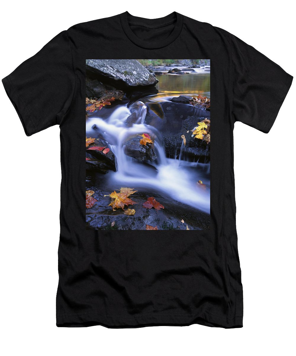 Feb0514 Men's T-Shirt (Athletic Fit) featuring the photograph Leaves In Little River Great Smoky by Tim Fitzharris