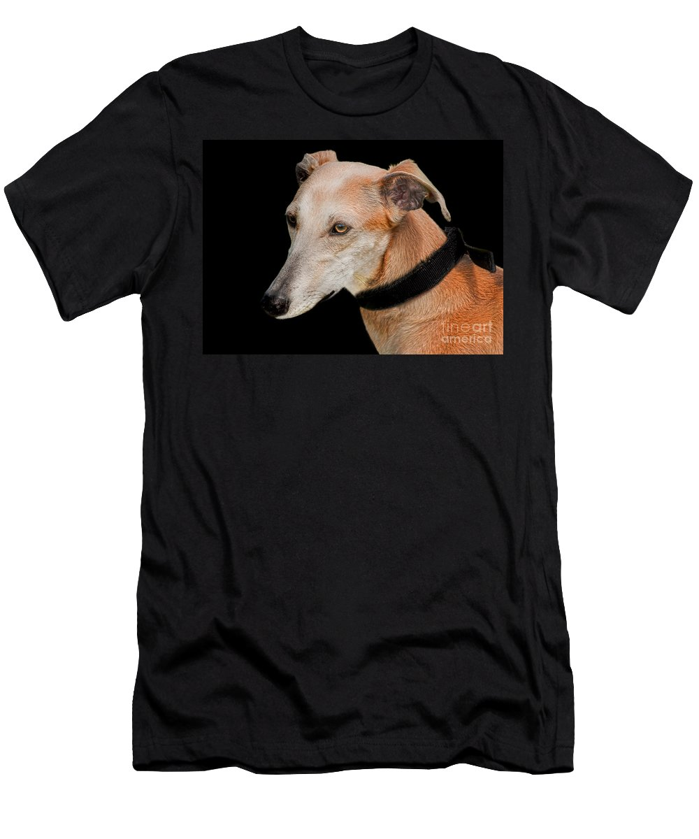 Black Background Men's T-Shirt (Athletic Fit) featuring the photograph Lurcher by Linsey Williams