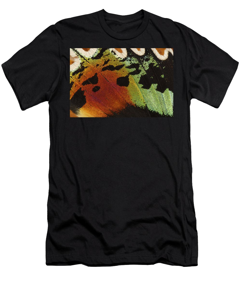 Feb0514 Men's T-Shirt (Athletic Fit) featuring the photograph Madagascan Sunset Moth Wing Detail by Thomas Marent