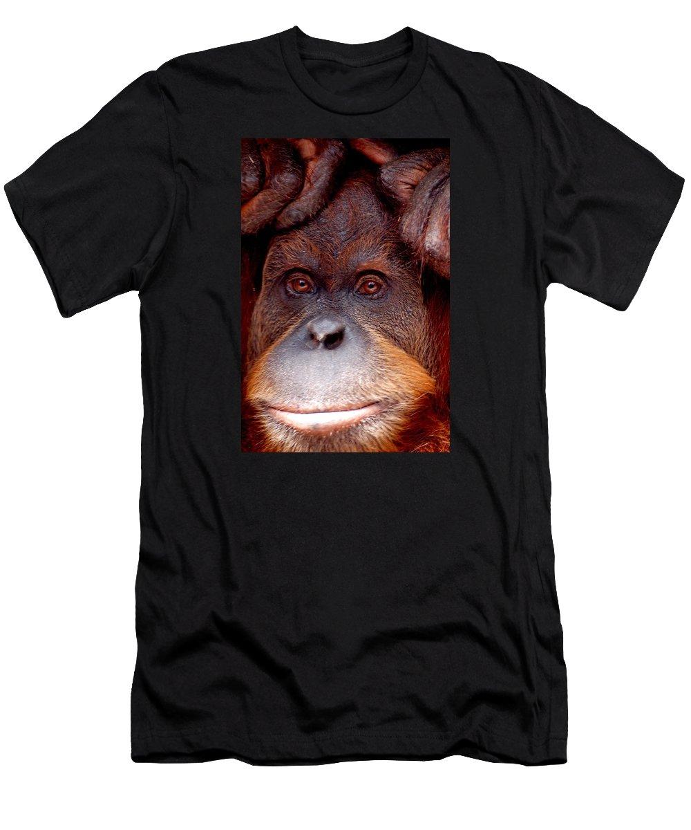 Orangutan Men's T-Shirt (Athletic Fit) featuring the photograph Orangutan by FL collection