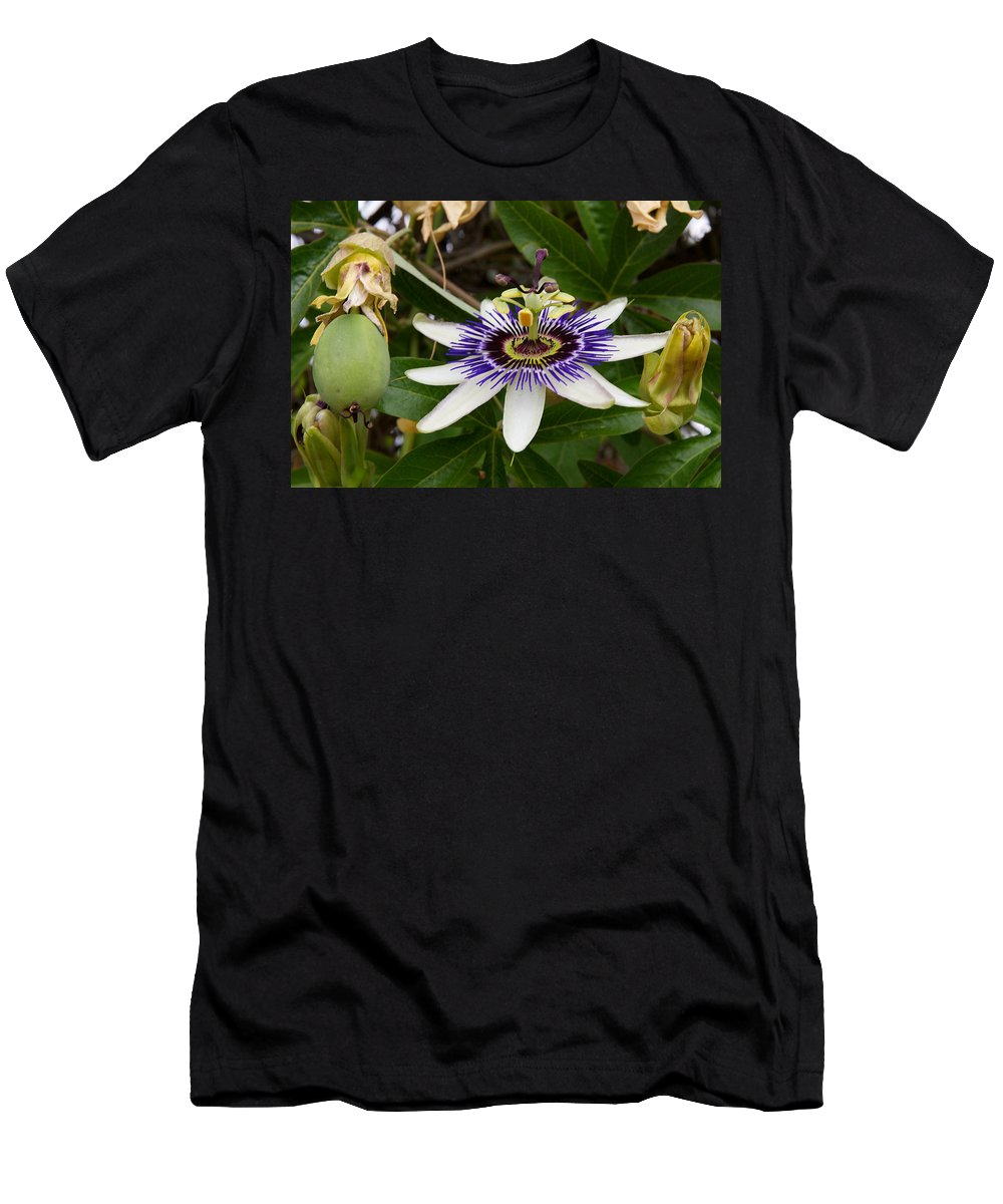 Rose Bowl Men's T-Shirt (Athletic Fit) featuring the photograph The Flower 13 by Richard J Cassato
