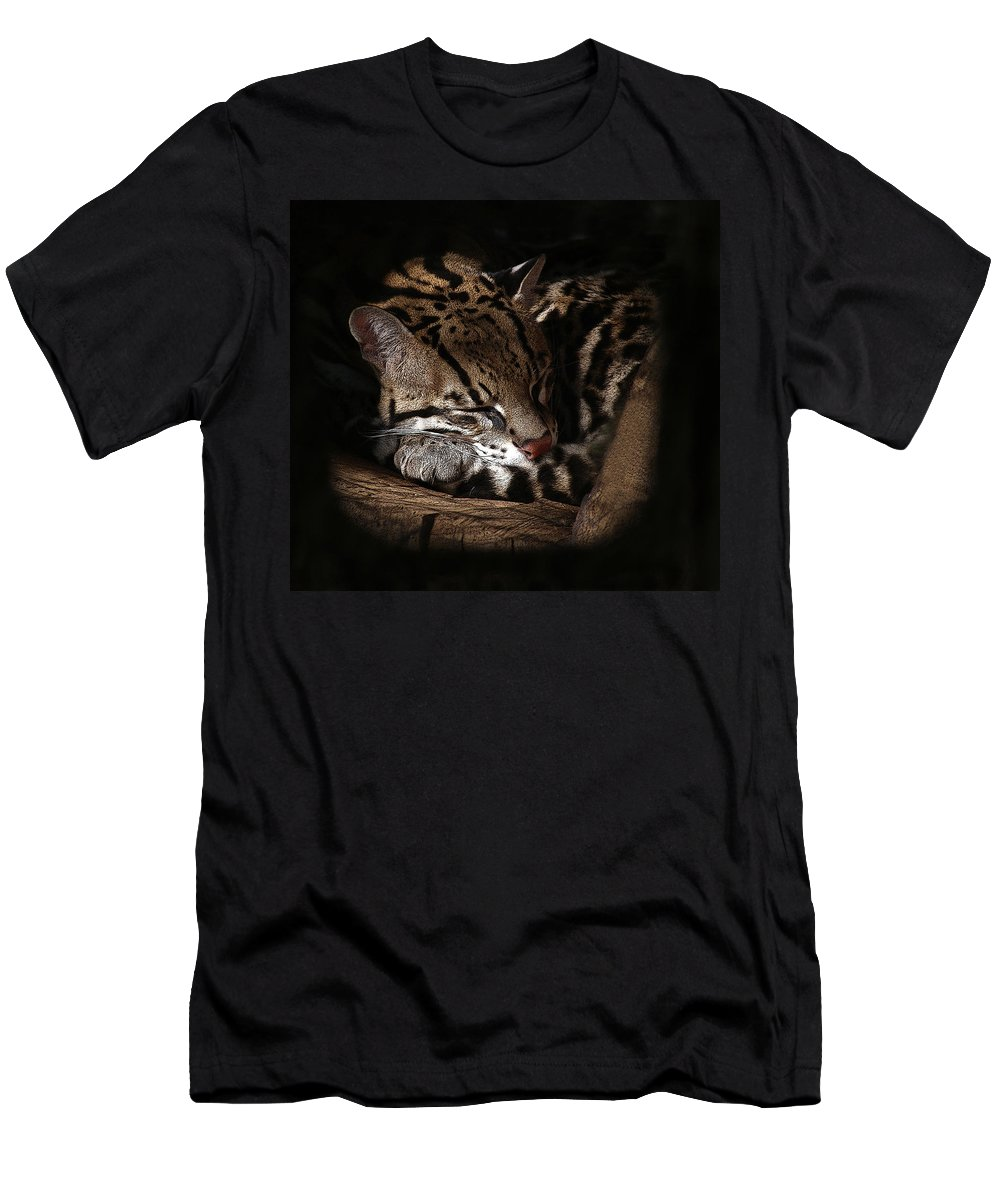 Animals Men's T-Shirt (Athletic Fit) featuring the photograph The Ocelot by Ernie Echols