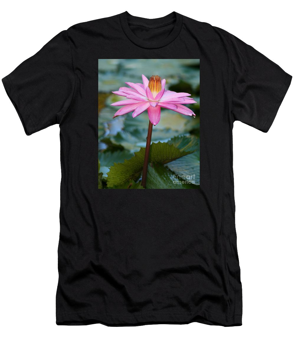 Flower Men's T-Shirt (Athletic Fit) featuring the photograph Water Lily by Kathy DesJardins