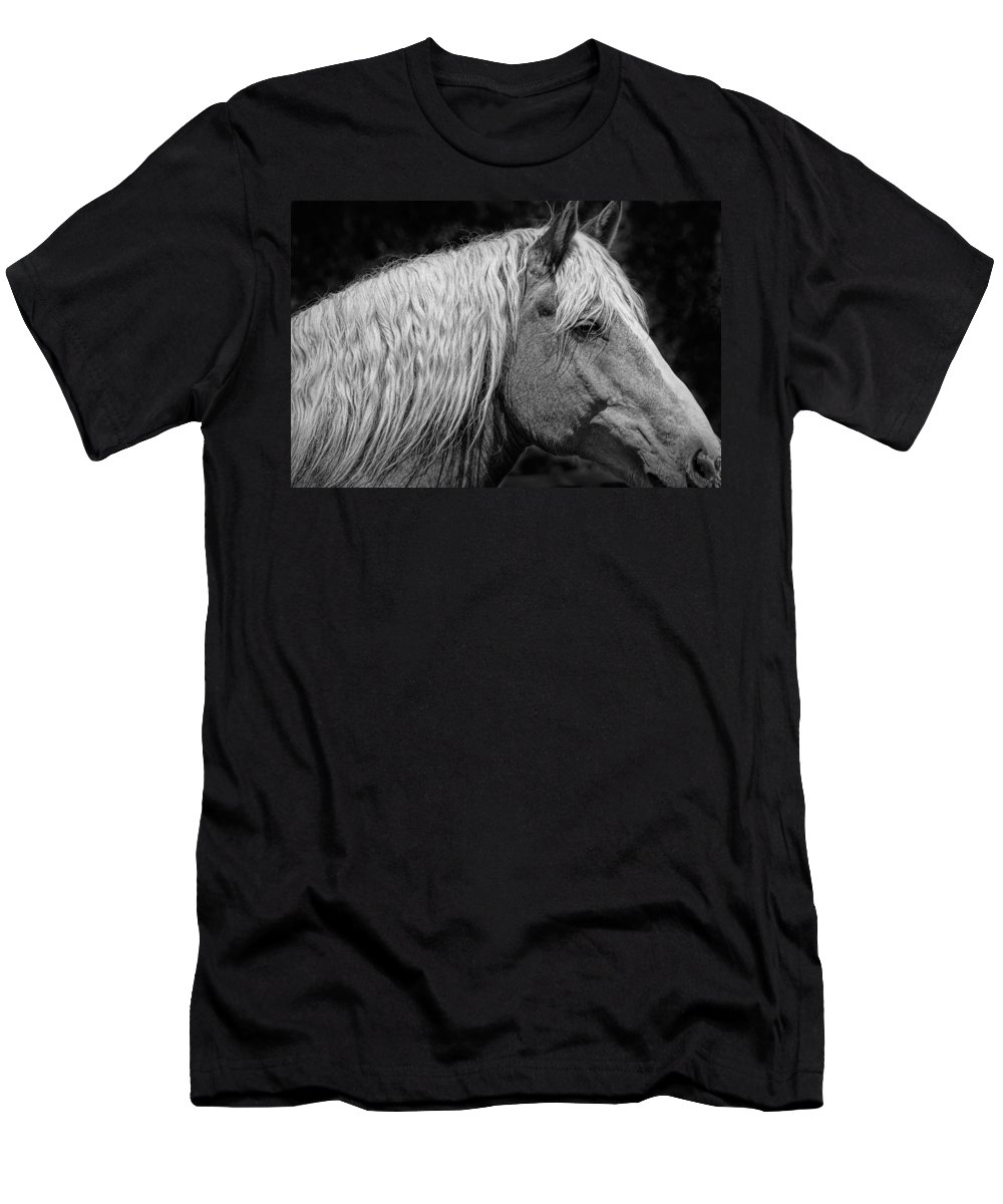 Art Men's T-Shirt (Athletic Fit) featuring the photograph Western Horse In Alberta Canada by Randall Nyhof