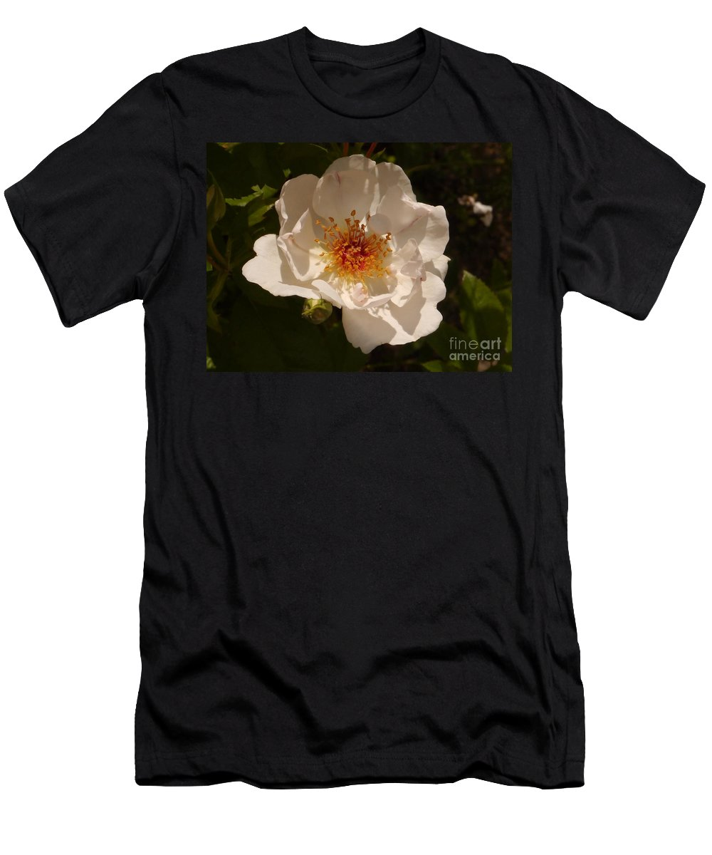 White Rose Men's T-Shirt (Athletic Fit) featuring the photograph White Rose by Christiane Schulze Art And Photography