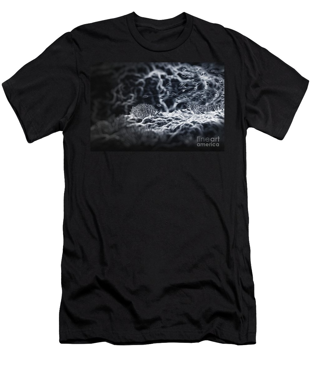 Cells Men's T-Shirt (Athletic Fit) featuring the photograph Human Sperm by Science Picture Co