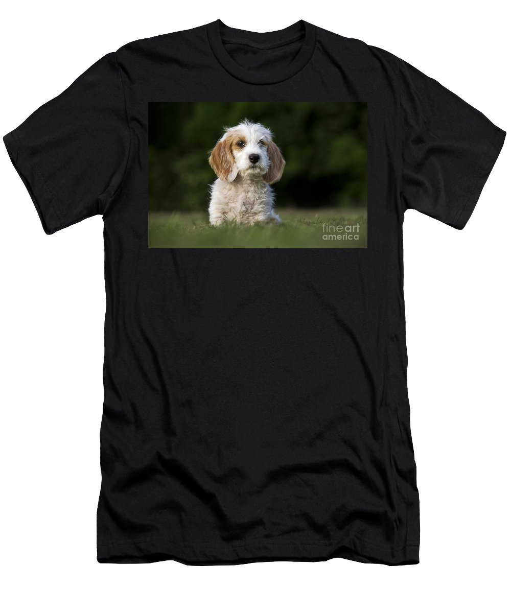 Mammal Men's T-Shirt (Athletic Fit) featuring the photograph 110506p205 by Arterra Picture Library