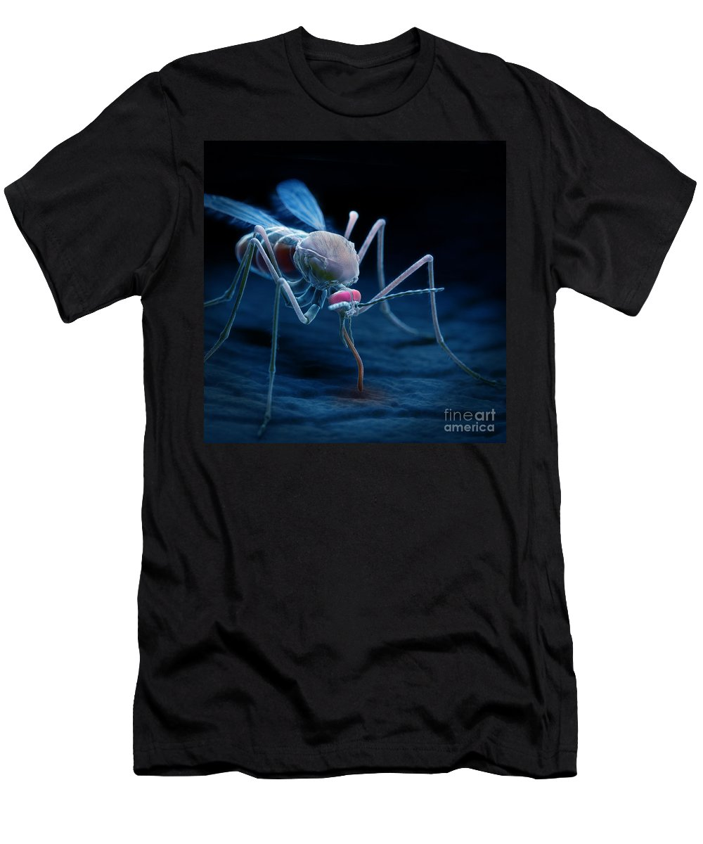 3d Visualisation Men's T-Shirt (Athletic Fit) featuring the photograph Anopheles Mosquito by Science Picture Co
