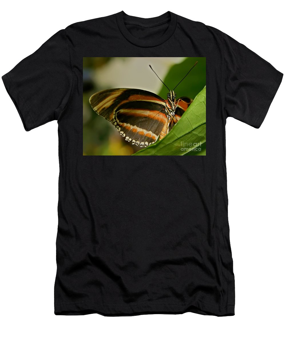 Butterfly Men's T-Shirt (Athletic Fit) featuring the photograph Butterfly by Olga Hamilton