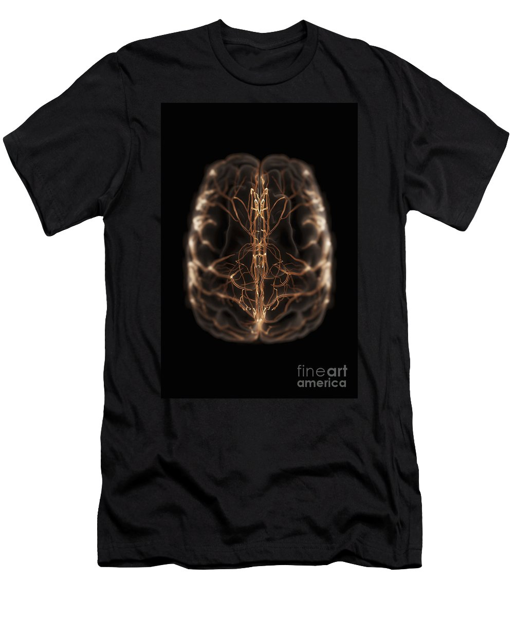 3d Visualisation Men's T-Shirt (Athletic Fit) featuring the photograph Brain With Blood Supply by Science Picture Co