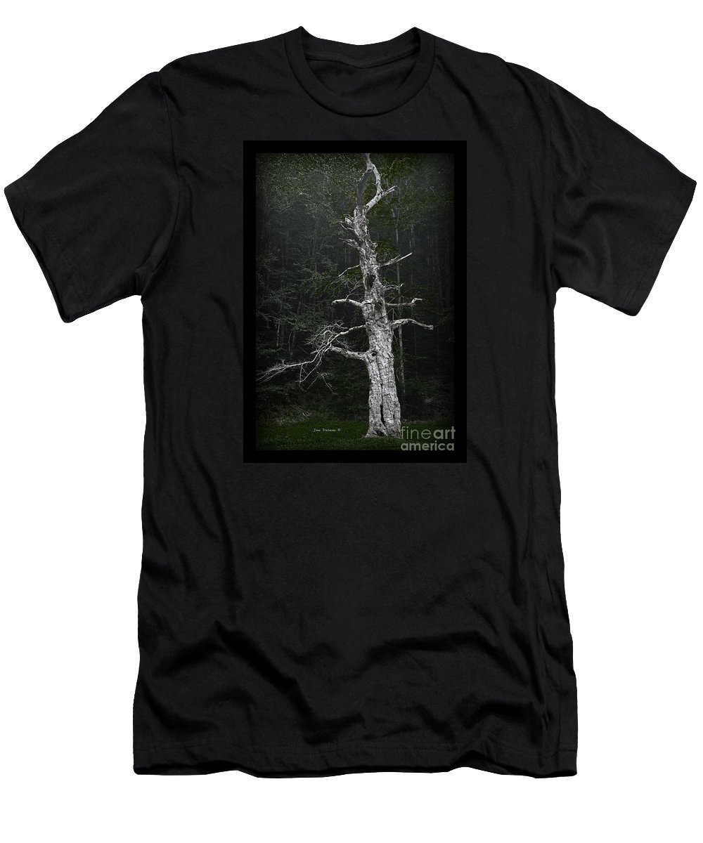 Ancient Men's T-Shirt (Athletic Fit) featuring the photograph Anthropomorphic Tree by John Stephens