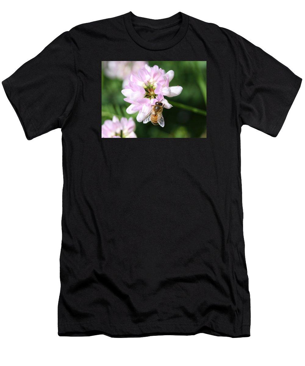 Honeybee Men's T-Shirt (Athletic Fit) featuring the photograph Honeybee On Crown Vetch by Lucinda VanVleck