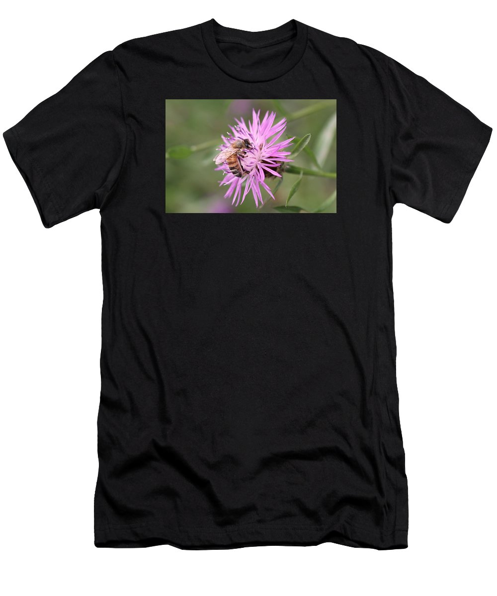 Honeybee Men's T-Shirt (Athletic Fit) featuring the photograph Honeybee On Ironweed by Lucinda VanVleck