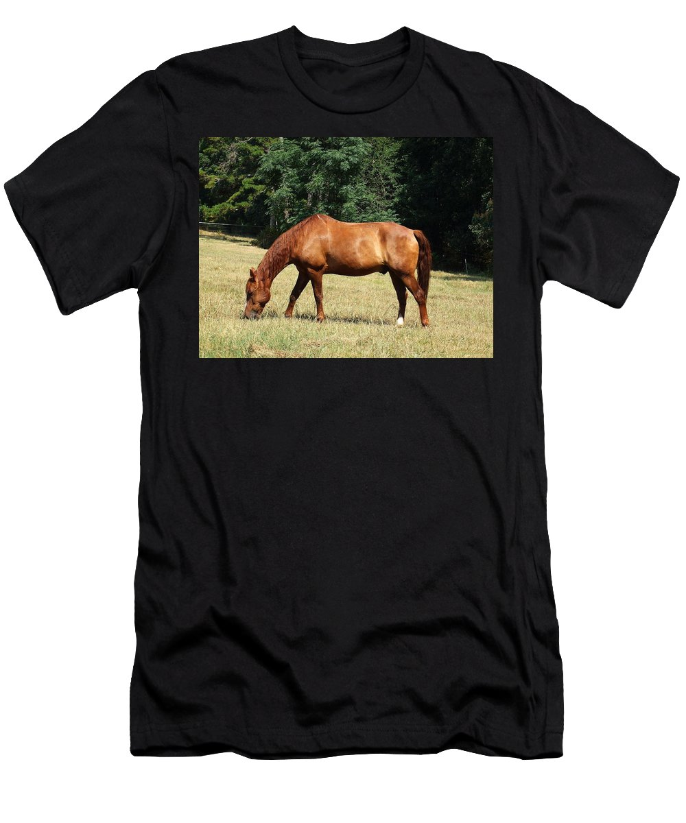 Horse Men's T-Shirt (Athletic Fit) featuring the photograph Maverick by Lisa Wormell