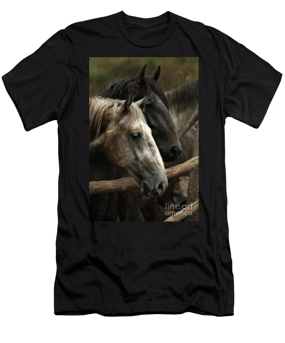 Horse Men's T-Shirt (Athletic Fit) featuring the photograph Over The Fence by Angel Ciesniarska