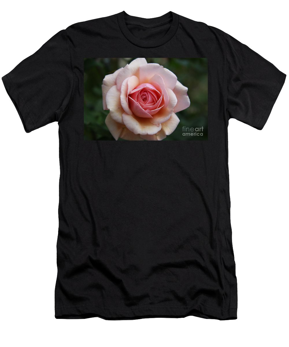 Rose Men's T-Shirt (Athletic Fit) featuring the photograph Pure Beauty by Christiane Schulze Art And Photography