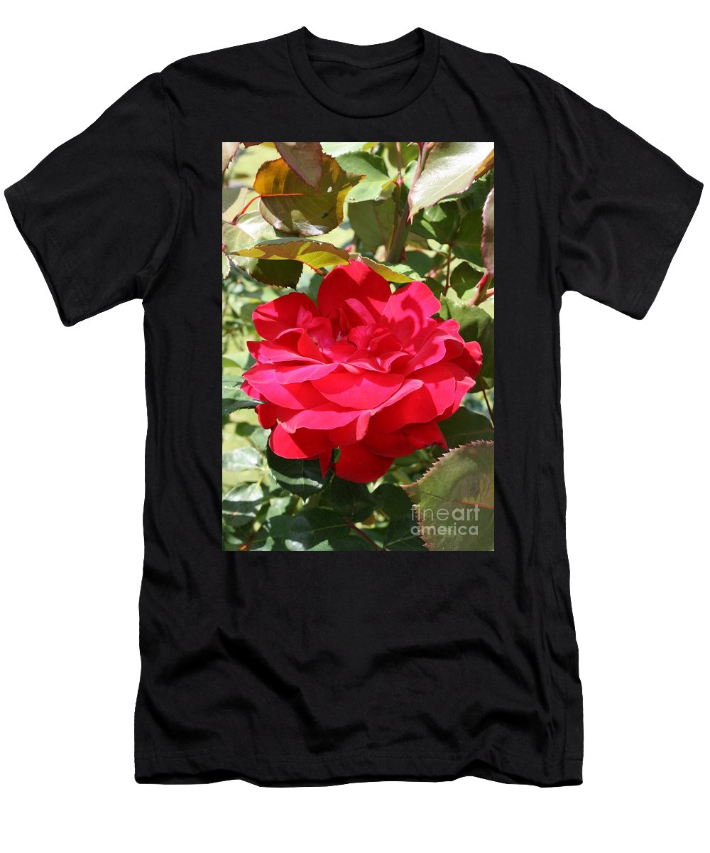 Red Rose Men's T-Shirt (Athletic Fit) featuring the photograph Red Red Rose by Christiane Schulze Art And Photography